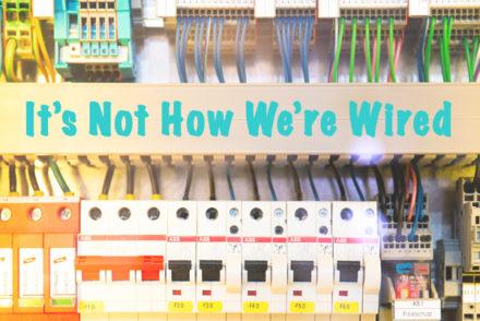 Wired, programming, nature vs nurture, learning, genetics